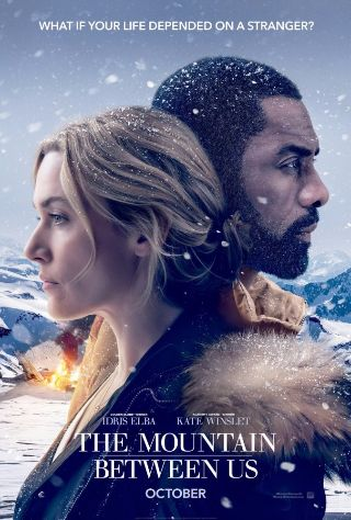 Download The Mountain Between Us torrent